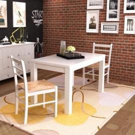 Set de 2 chaises en bois peint en blanc